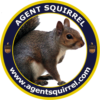 agentsquirrel.com