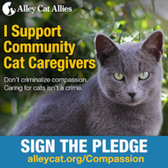 Support Alley Cat Allies